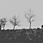 PicsArt_11-09-02.15.16
